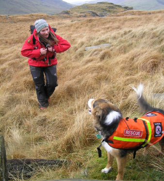 Air Scenting Search Dogs